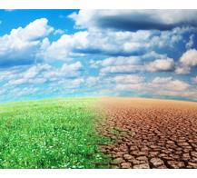 transition-changement-climatique