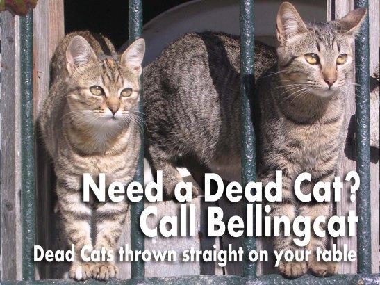 dead-cats