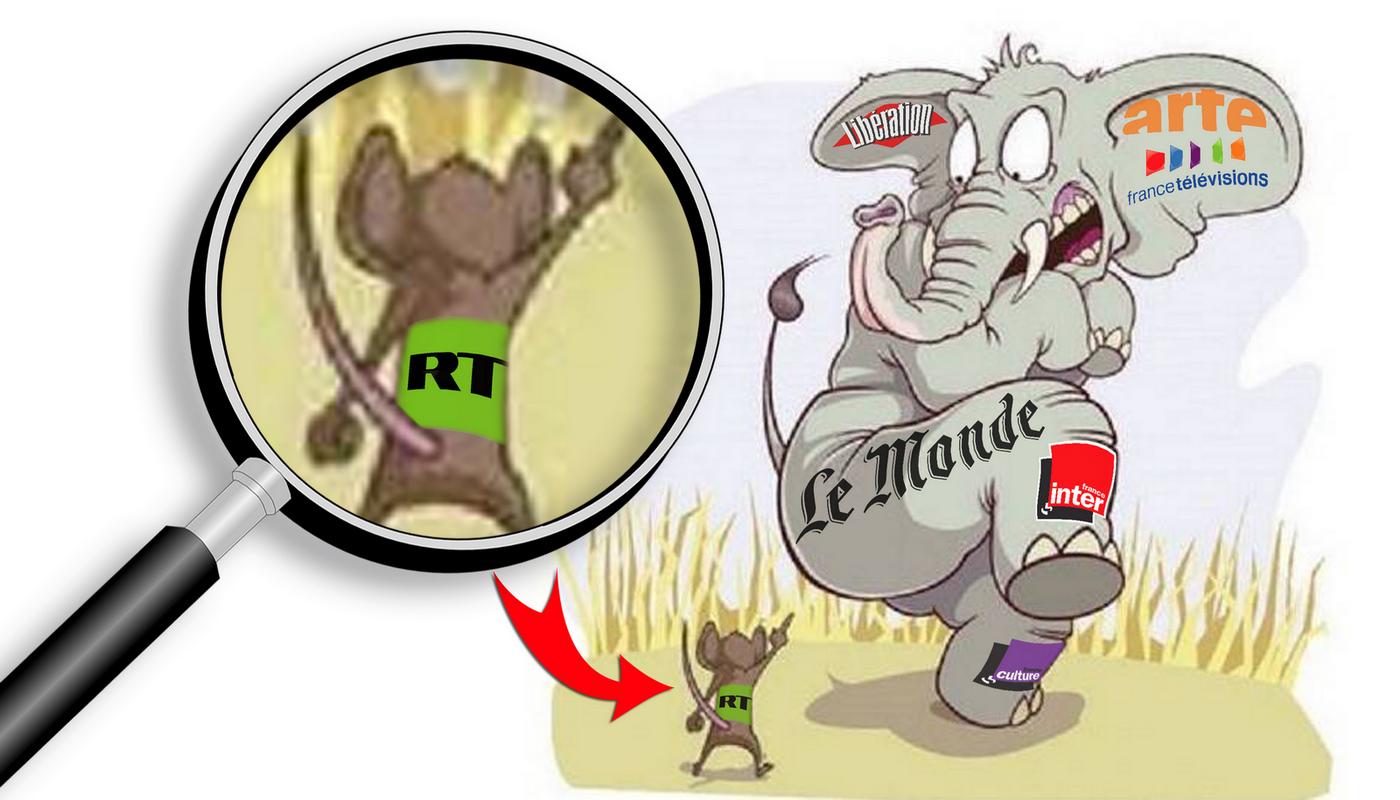Macron president - Page 6 Elephant-souris